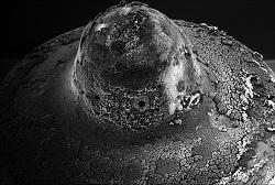 verschmutzter Diesel Injektor ohne Aral SuperDiesel